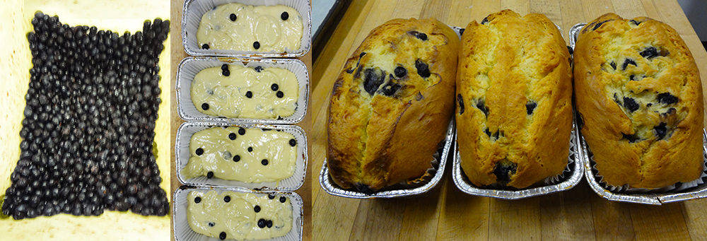 Fresh Blueberries into mixture, into pans, then Blueberry loaves out of the oven